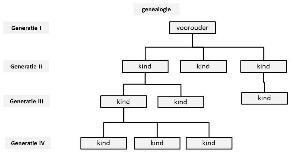 genealogie-w